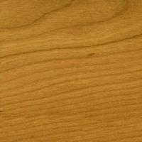 Woca woodfiller kersen 500 gr  doos